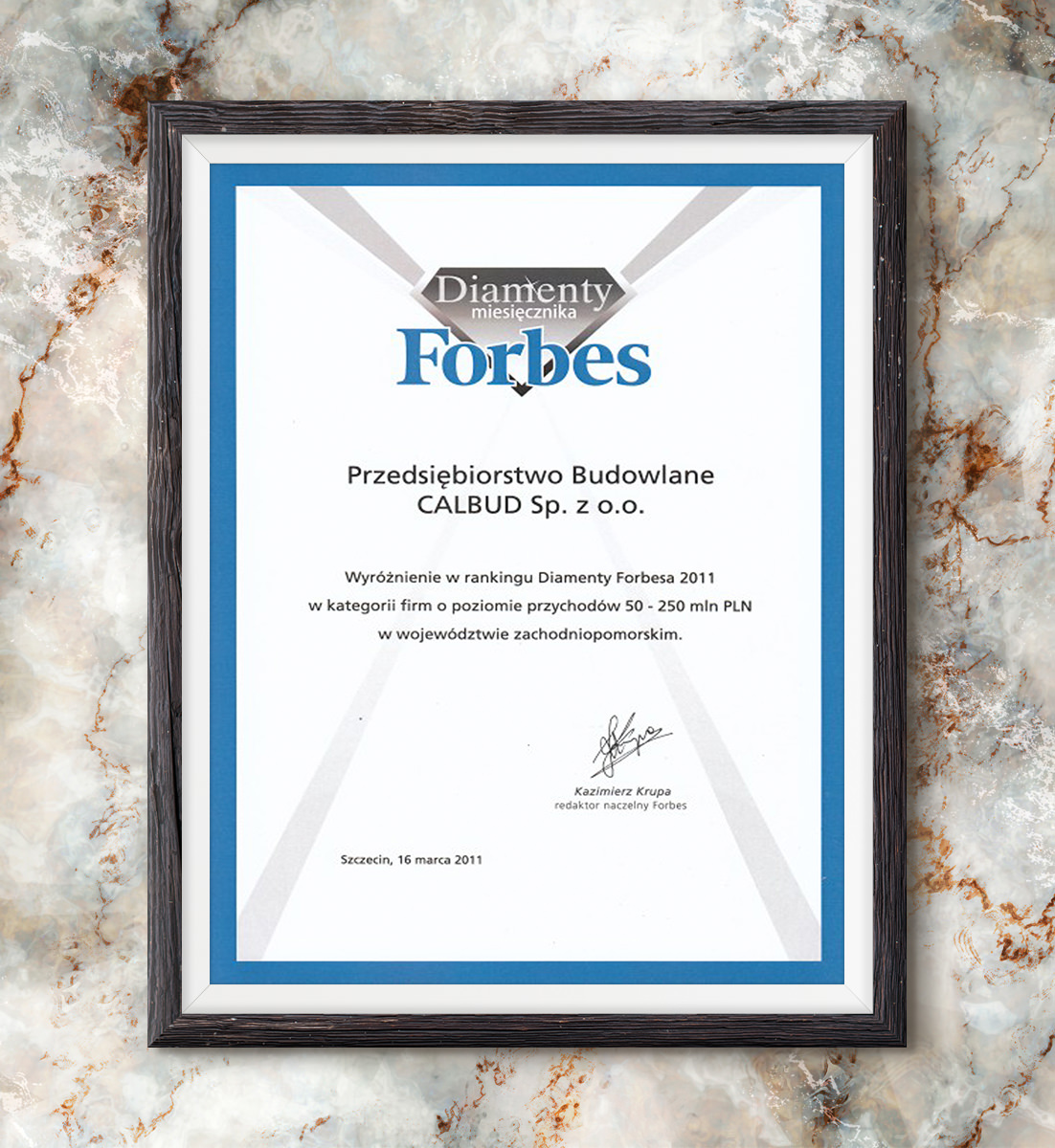 Diamenty Forbesa 2011 - wyróżnienie